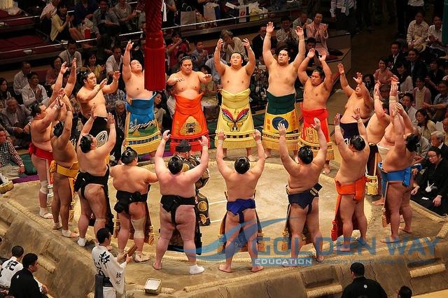 Xem đấu vật Sumo